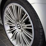 Black AlloyGator alloy wheel protectors